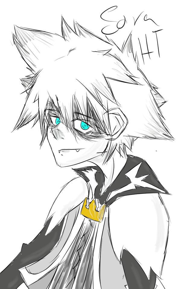 Kingdom Hearts Sora Halloween Town Costume.Sora Kingdom Hearts 1 2 Halloween Town Costume By Treebarkdragon On
