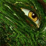 --the eye of the beast--