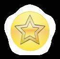 Badge Platoonlead_light