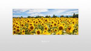 Ws Nature 001