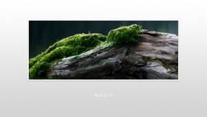 Ws Nature 005