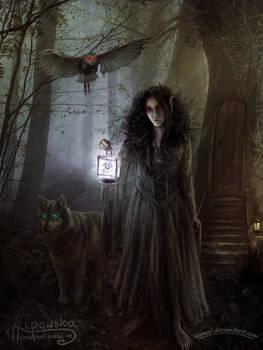 The Nightwraith - collab