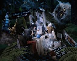 Take Care in Wonderland by kimsol