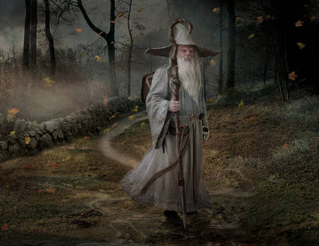 Merlin Enchanter and Wise Man