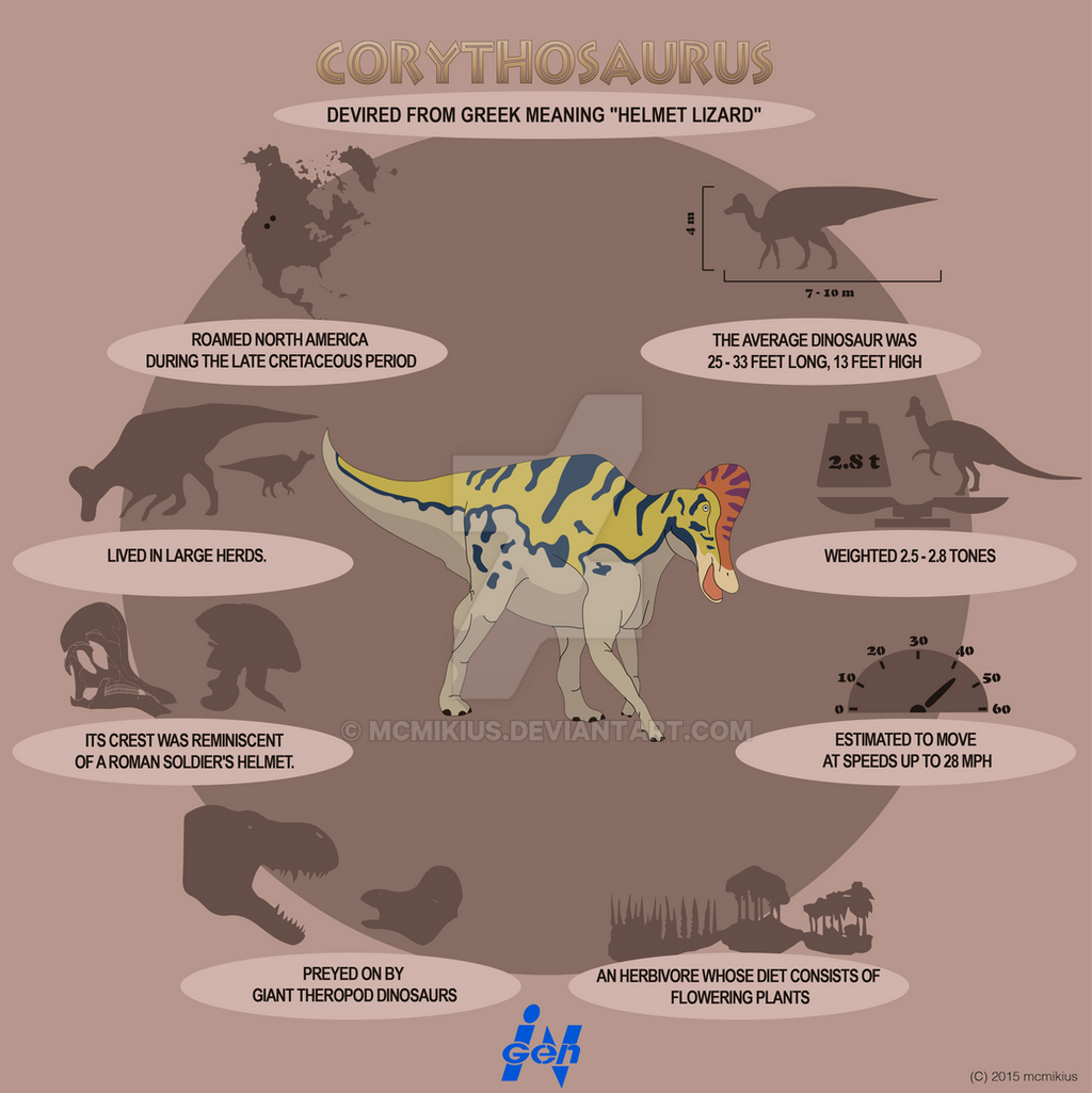 Corythosaurus Lite Infographics By Mcmikius On DeviantArt