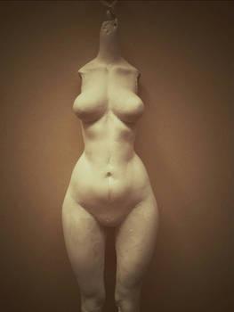 New body - WIP