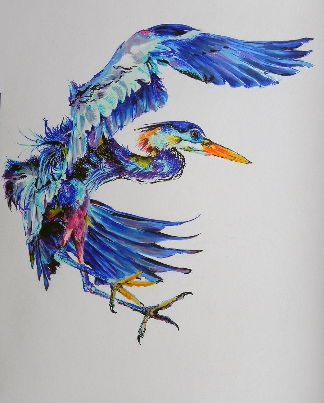 W.I.P- Great Blue Heron by kDdabous