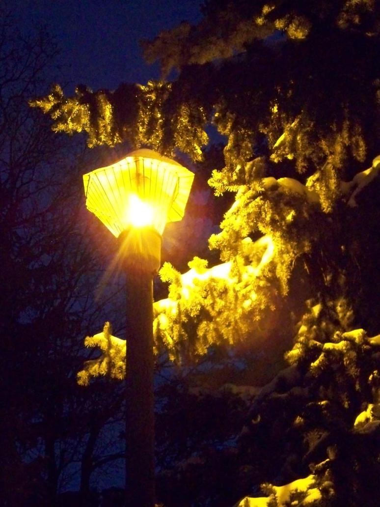 Evening light by fotokhajiit
