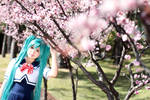 VOCALOIDs - HB to Miku 2012