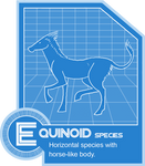 Equinoid Species Folder Info