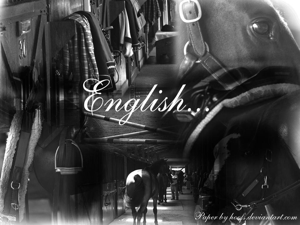 English Riding Wallpaper by Hoofs on DeviantArt