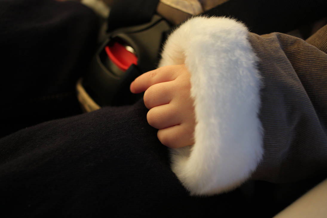 Child's Hand in Fur