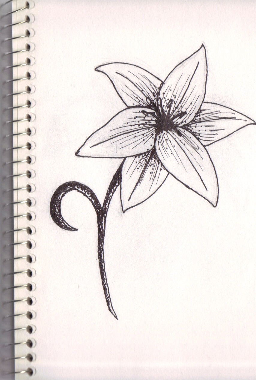 another lily flower by lyddy666 on DeviantArt