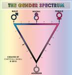 The Gender Spectrum Scale