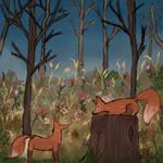Littel fox