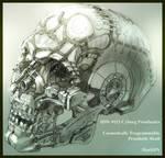 Prosthetic Skull