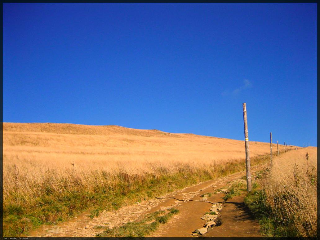 Long Way 2 by Mociex
