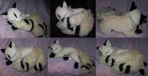 Sleeping Kirara
