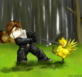 squall vs chocobos