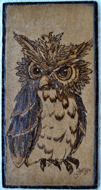 Angry Owl by Oricat