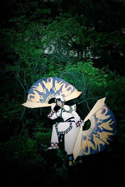 fan-ciful papillion by liberifatalis