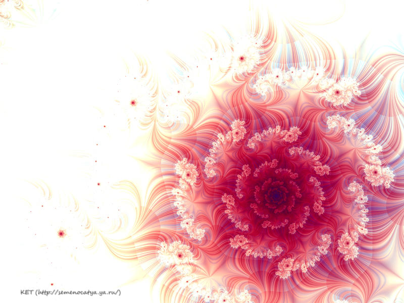 Scarlet flower. by semenocatya