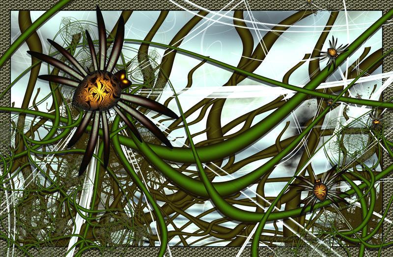 Spiders by semenocatya