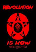 Revolution by Kamikazizakimak