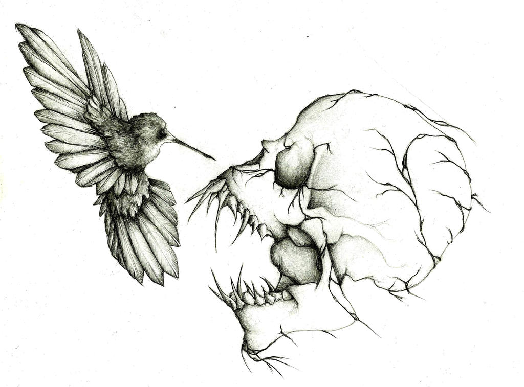 Death of a humming bird by tpeteuil