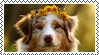 aussie stamp by Chrysso