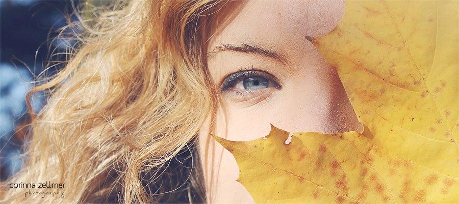 autumn 5 by Kekstraum