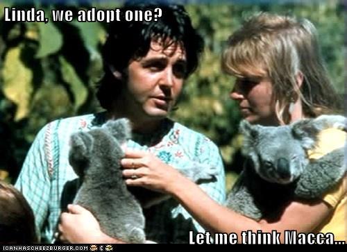 paul_wants_a_koala_by_whisper1236-d5bkkj2.png