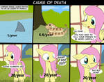 MLP Cause Of Death
