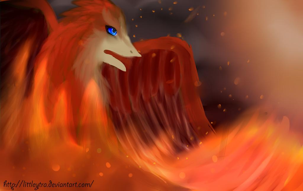 Phoenix by LittleYtra