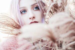 Snowy eyes
