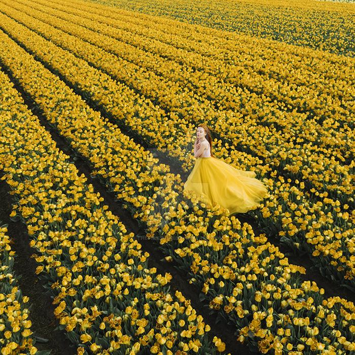 Yellow field by thefirebomb