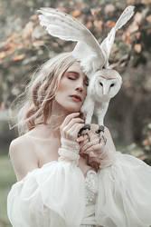 Owl Dream by thefirebomb