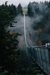 Suspension bridge in fog