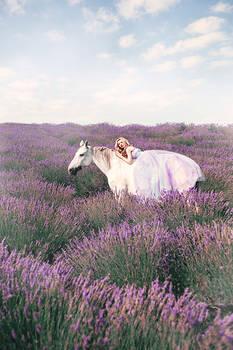 Magic Lavender