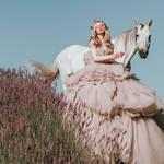 Alice in Lavenderland