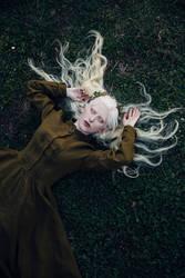 Fairy Dream