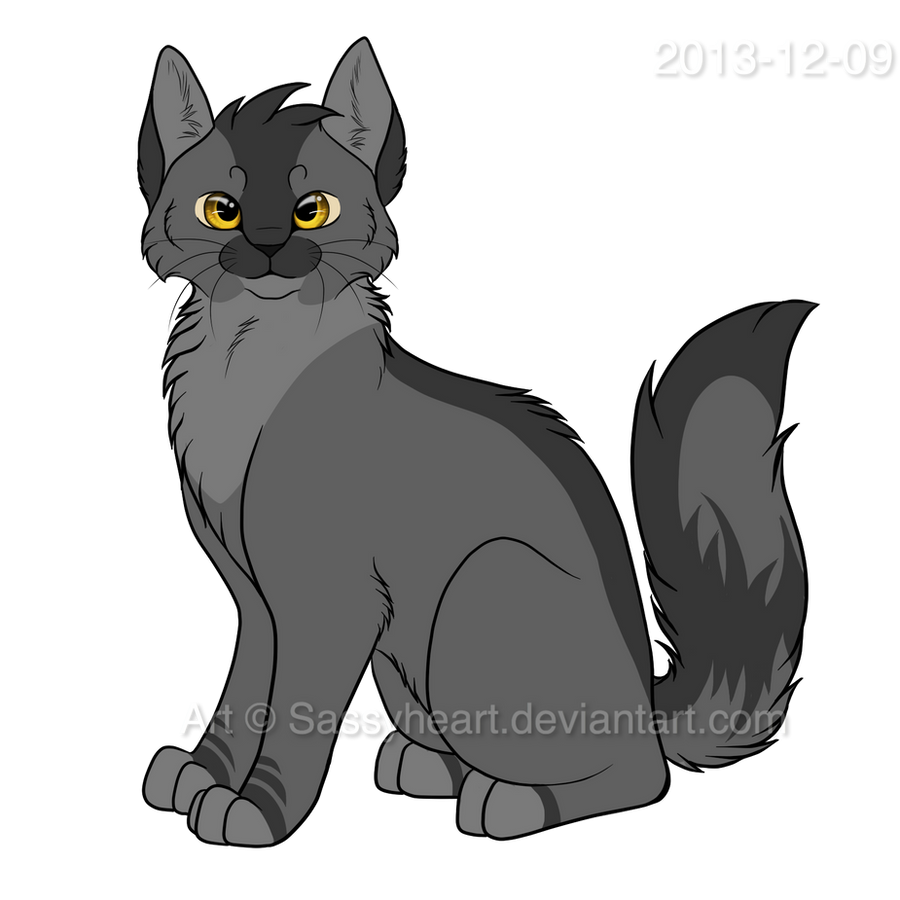 Graypaw Design by SassyHeartSsswarriorcats Graypaw