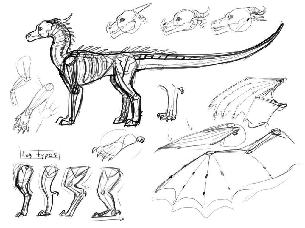 Anatomy sketches hmm by KenyaJoy