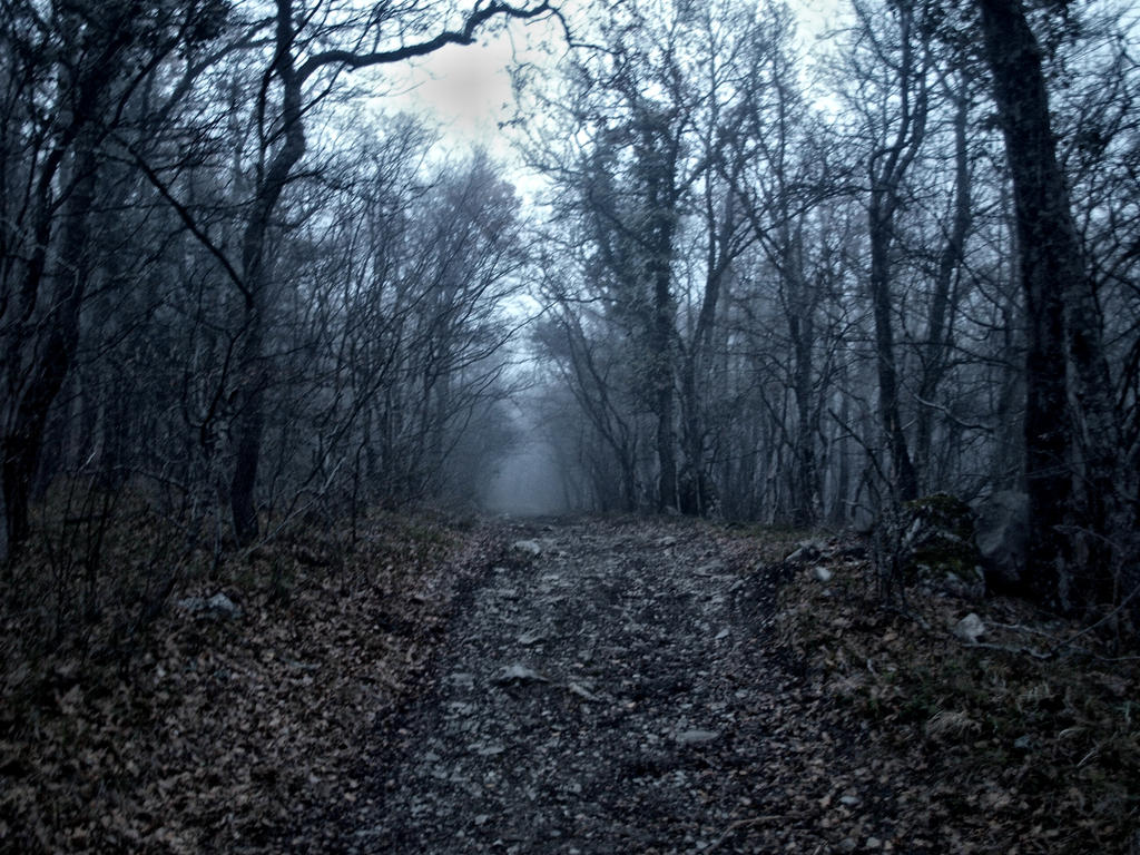 Misty path by Chari-ot