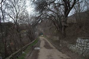 Rural road in late autumn by Sugar-Sugar-Bee