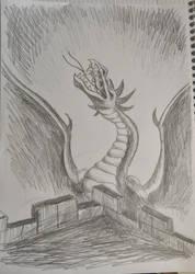 Attacking Dragon by Didiri1337