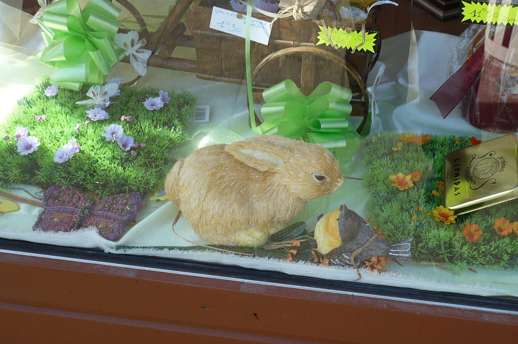 bunny behind the glass by nicolapin
