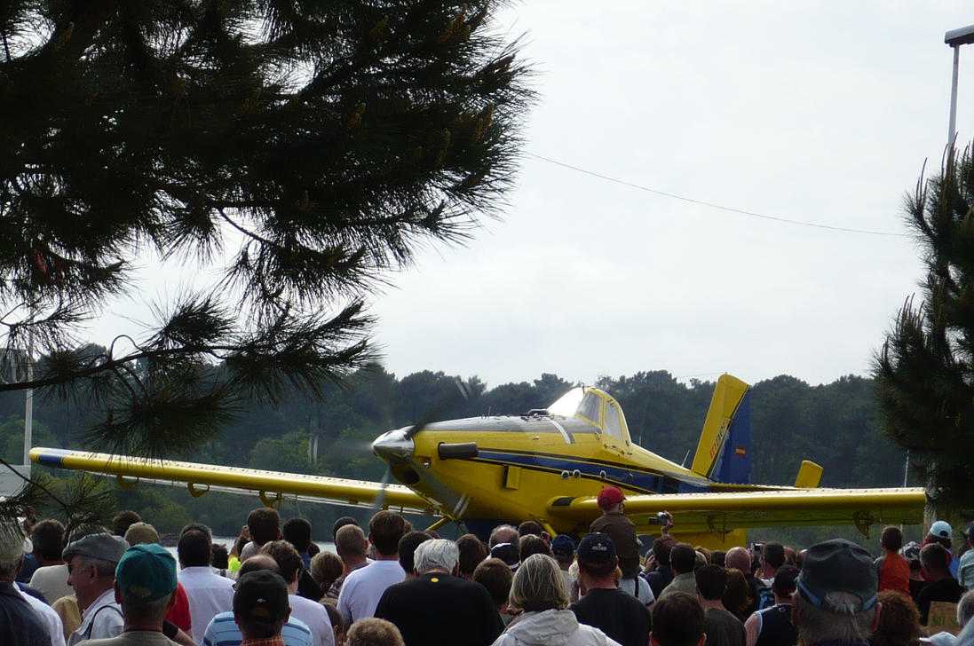 AirTractor AT802 Fire Boss by nicolapin