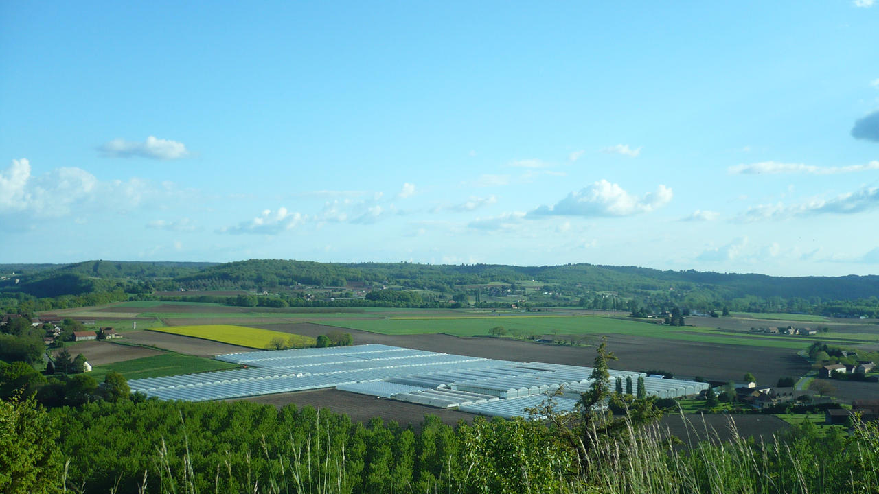 Greenhouses in Dordogne by nicolapin