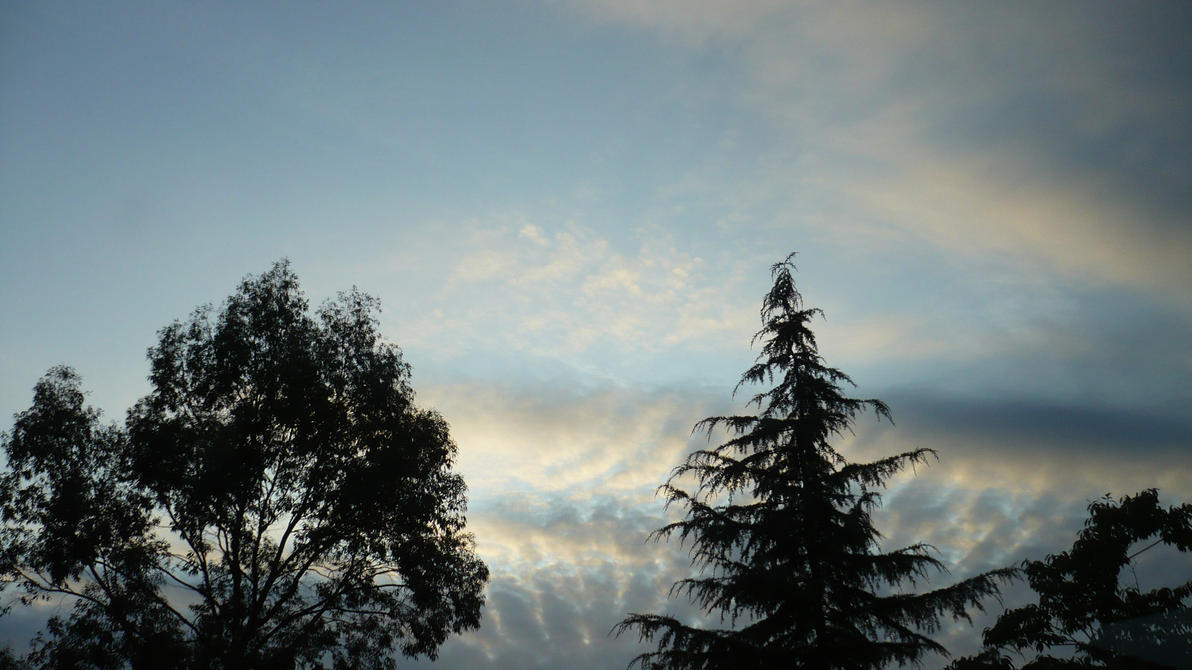 sweet clouds and the threes 1 by nicolapin